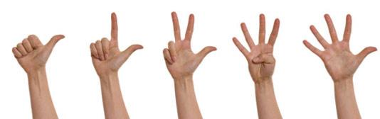 5 manos que indican cada una un número con los dedos del 1 al 5